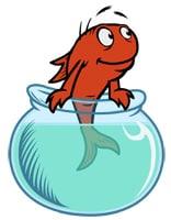 Character_fish